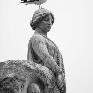 2018-06 Sylvia Kroll