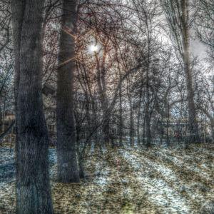 Märchenwald beim Augustabad Neubrandenburg - Marko Bennin