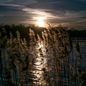 Sonnenaufgänge/Sonnenuntergänge