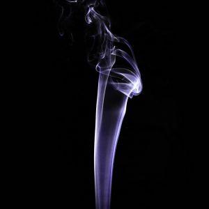 Rauch by Sylvia Kroll