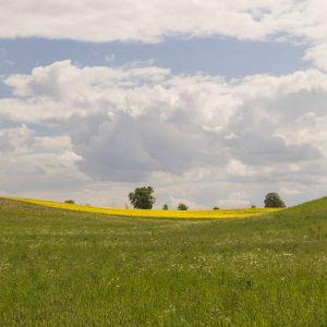 Mecklenburg ist nicht flach,sondern weit